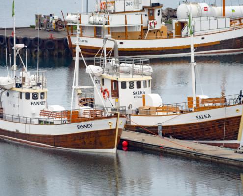 Walbeobachtungsboote im Hafen von Húsavík